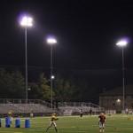 metal halide lights