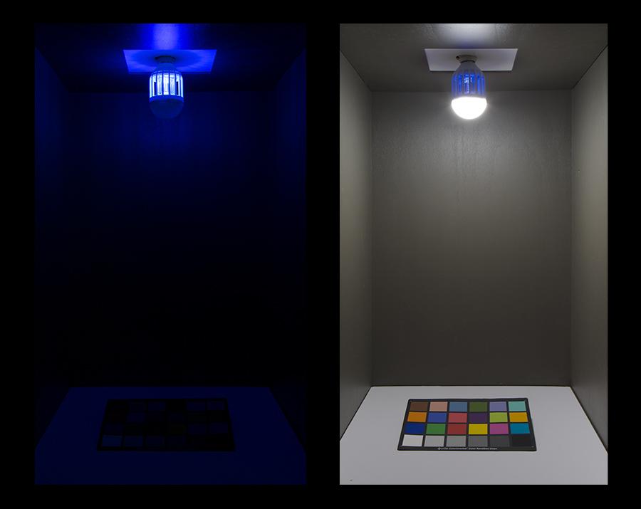LED bug bulb