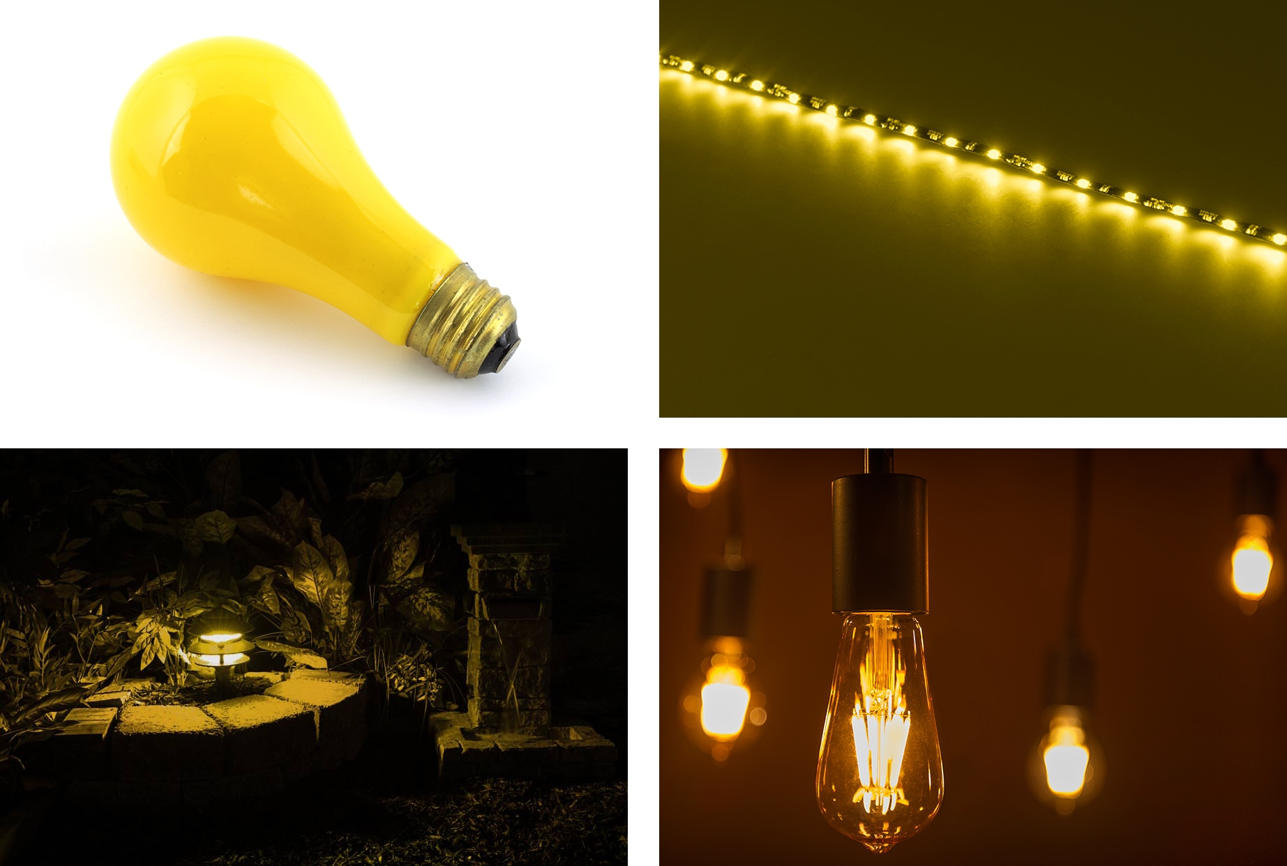 Do led lights attract bugs for Led landscape light bulbs