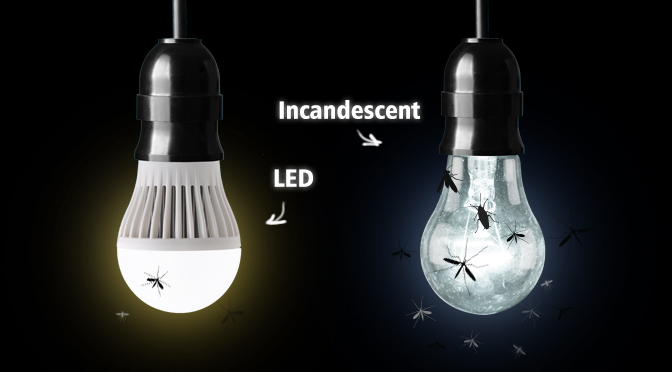 Do LED Lights Attract Bugs?