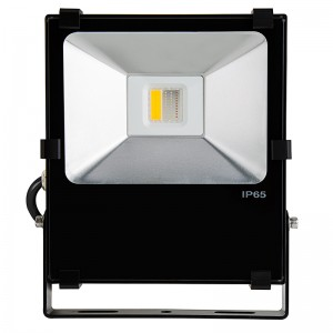 RGBW LED flood lights - outdoor LED lighting