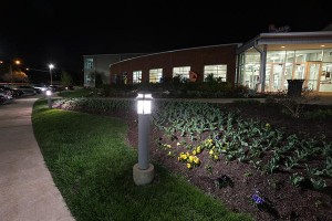 LED corn light in outdoor post - father's day gifts