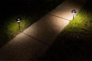 LED path lights by walkway