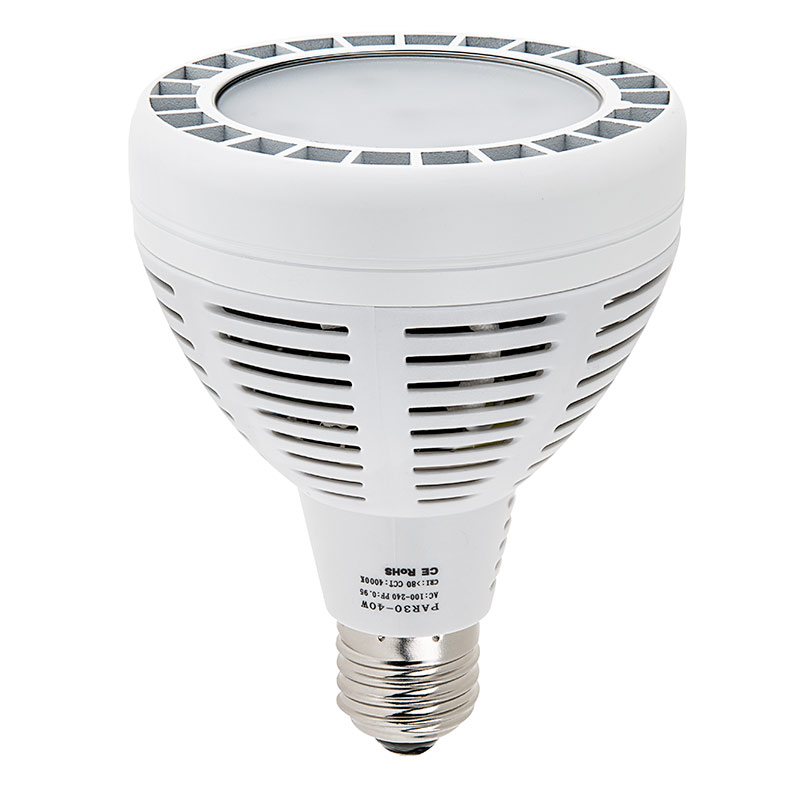 what is a spotlight - what is a floodlight - PAR30 bulb