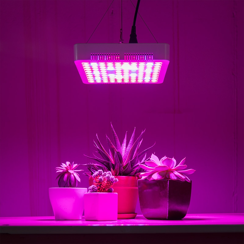 5-band full spectrum LED Grow Light - square 65W installed