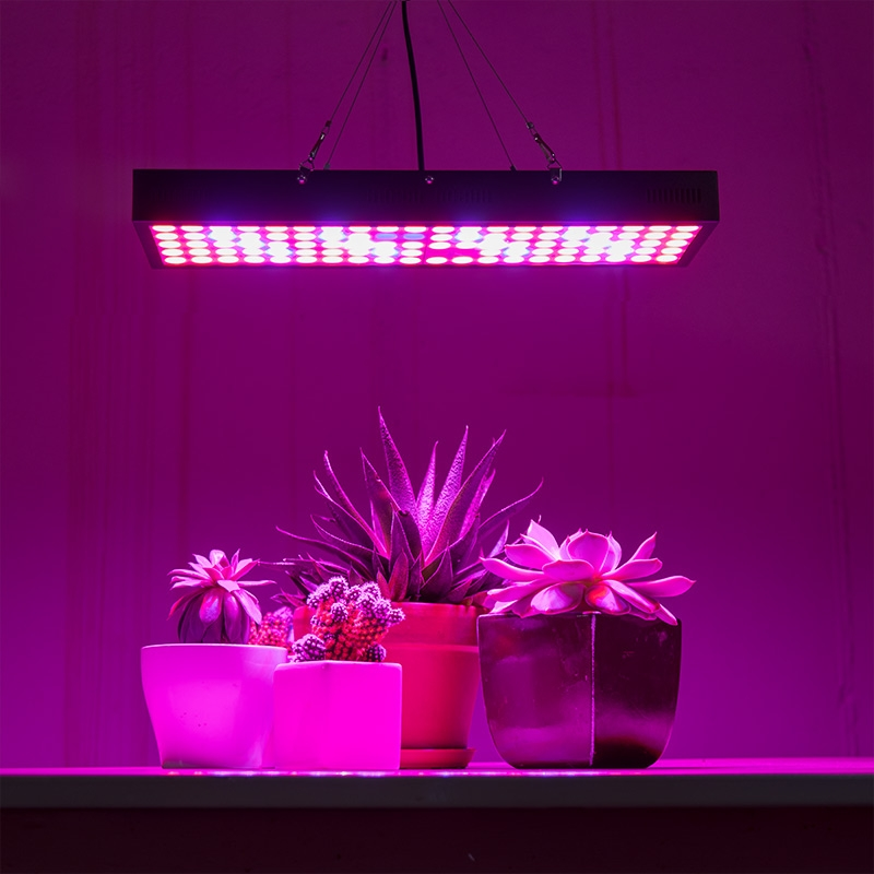 5-band full spectrum LED Grow Light - rectangular 65W installed