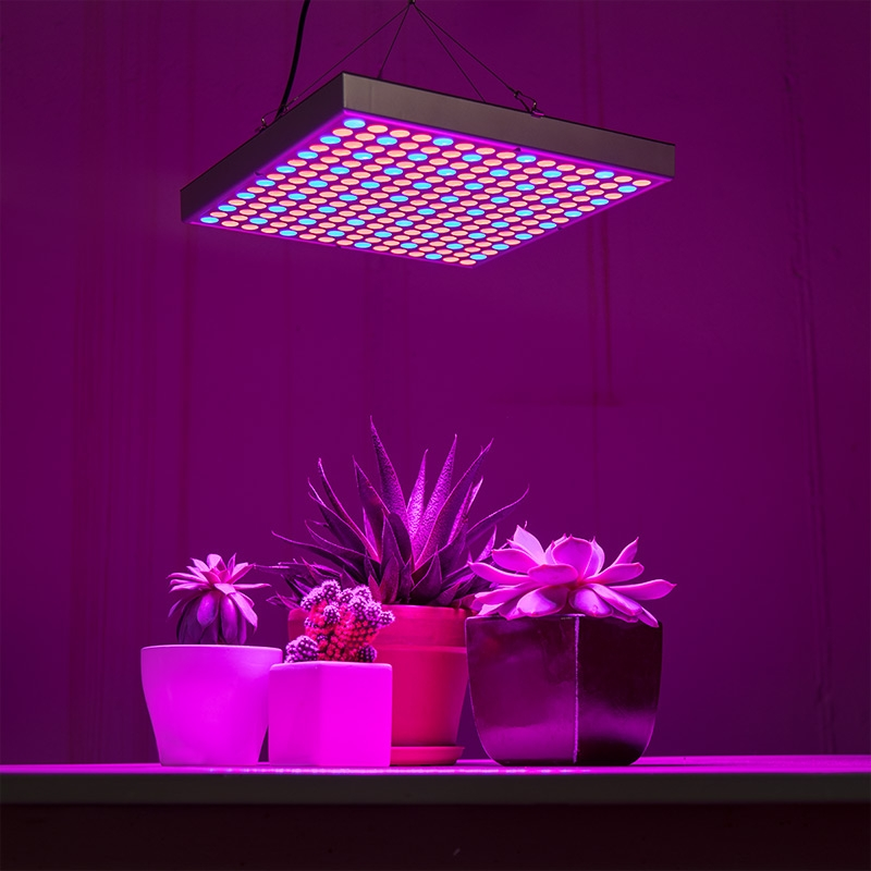 2-band full spectrum LED Grow Light - square 30W installed
