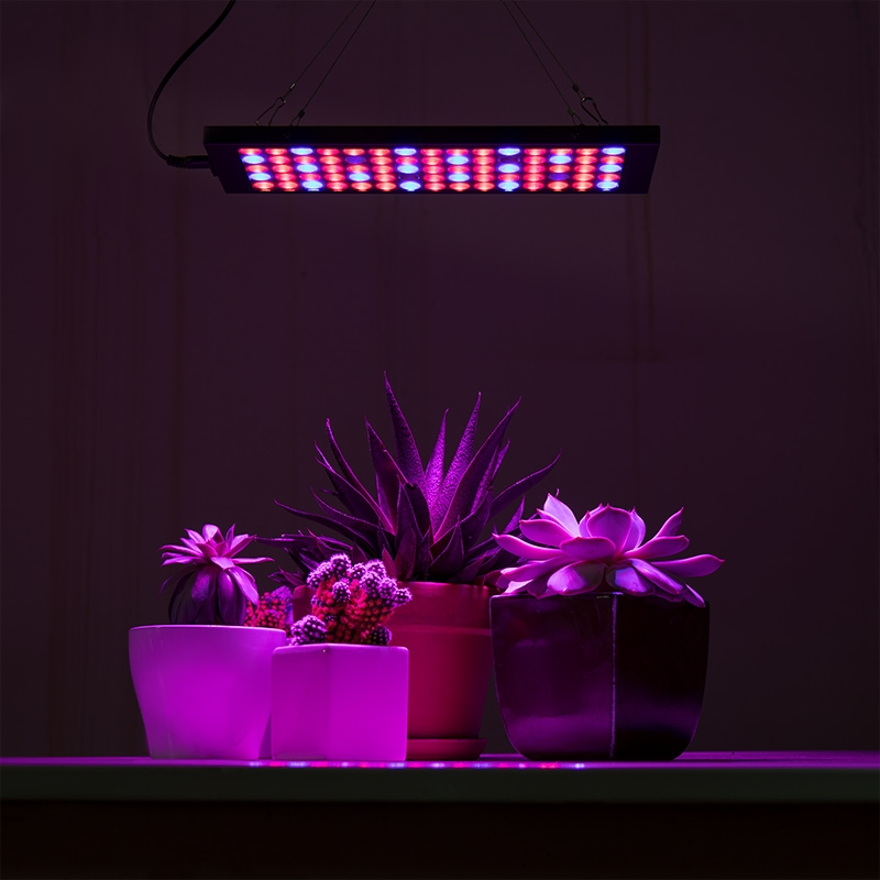 4-band full spectrum LED Grow Light - rectangular 10W installed