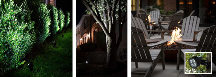 Landscape Lighting Design - spotlight trees