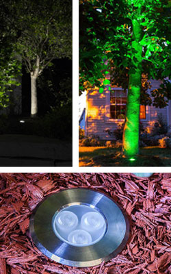 Landscape Lighting Design - well lights trees
