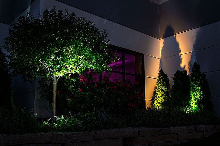 Landscape Lighting Design - spotlight shadowing