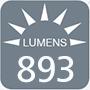 893 lumens
