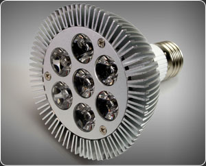 Par30 LED Light Bulb