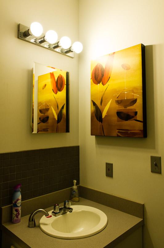 Bathroom Bulbs