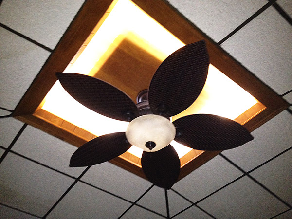 Led T8 Tube 17 Watt Led Tube Lights Led Panel Light