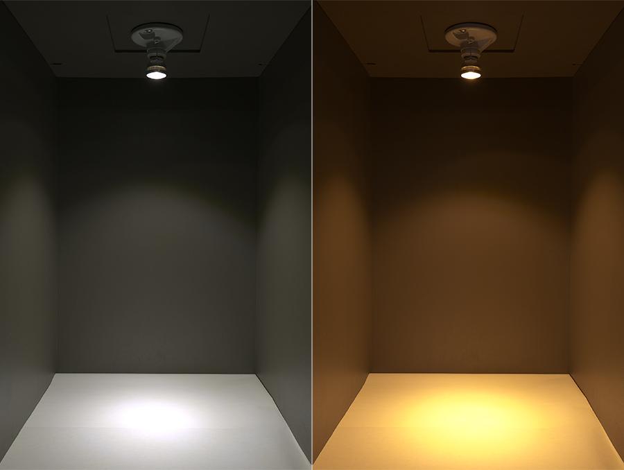 PAR16 X4W X   30° Bulbs In Natural And Warm White PAR16 X4W X   30° Bulbs  In Natural And Warm White. PAR16 LED Bulb   40 Watt Equivalent LED Spotlight  ...