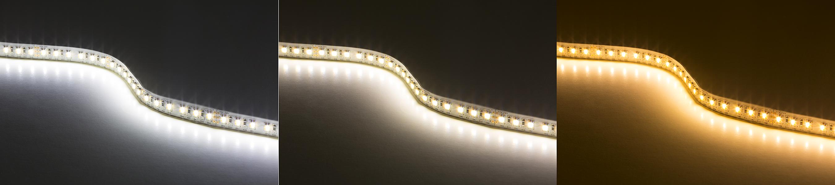 Tunable White LED Strip Light Kit   Color Temperature Changing 24V LED Tape  Light   511 Lumens/ft.