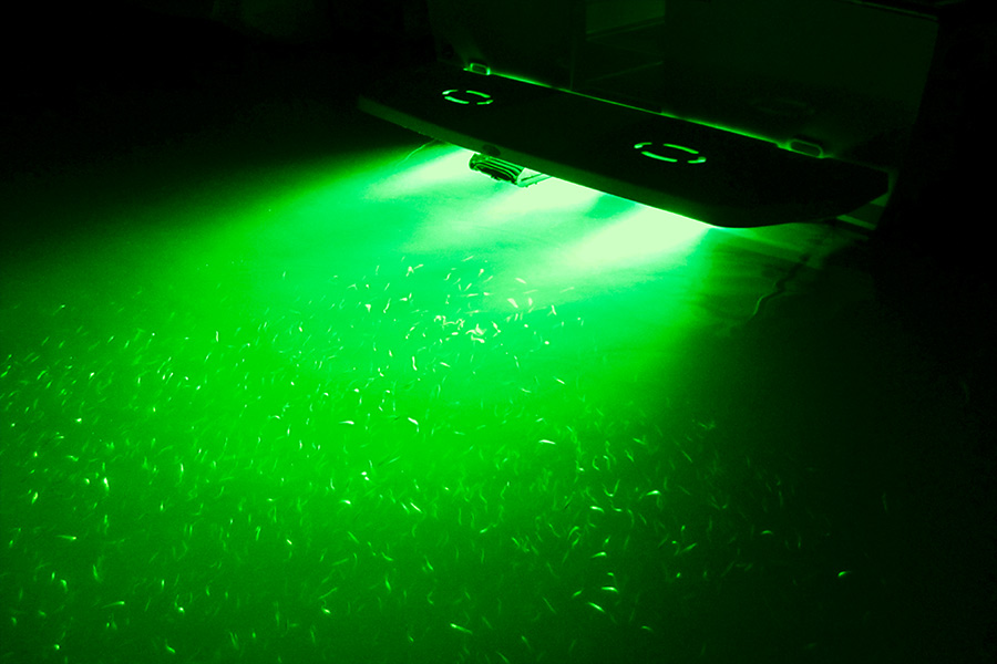 Led Underwater Boat Lights And Dock Lights Double Lens