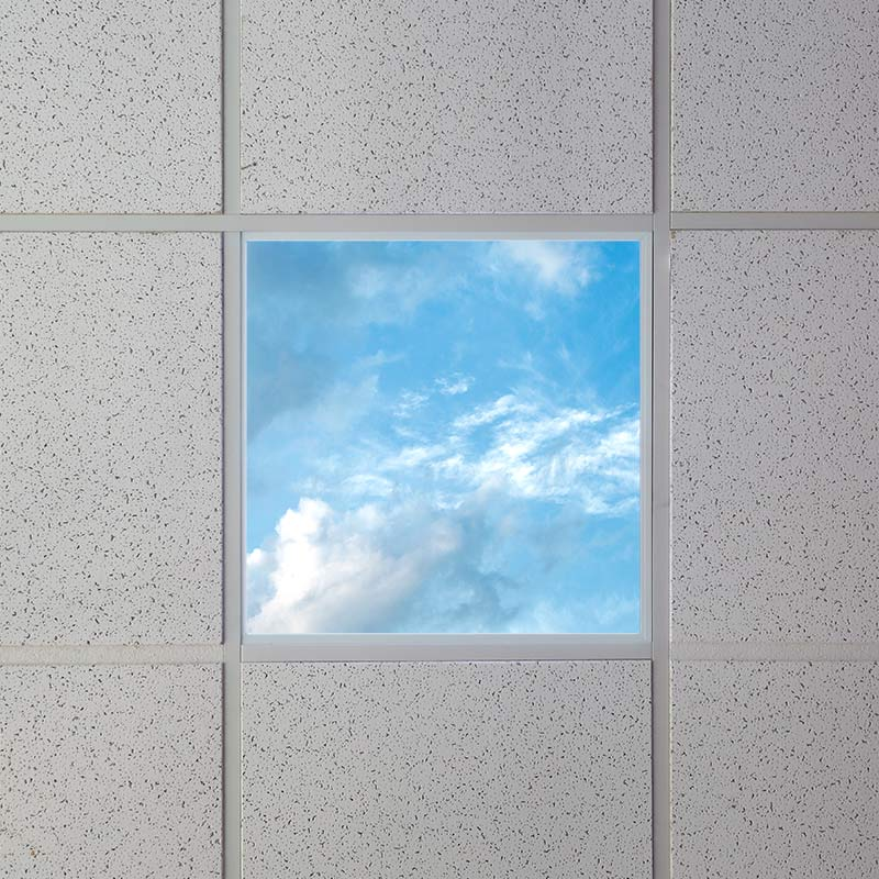 Led skylight 2x2 even glow led panel light w skylens summer even glow led panel light summer sky luxart print 2 x 2 even glow led panel light summer sky luxart print 2 x 2 installed in drop ceiling mozeypictures