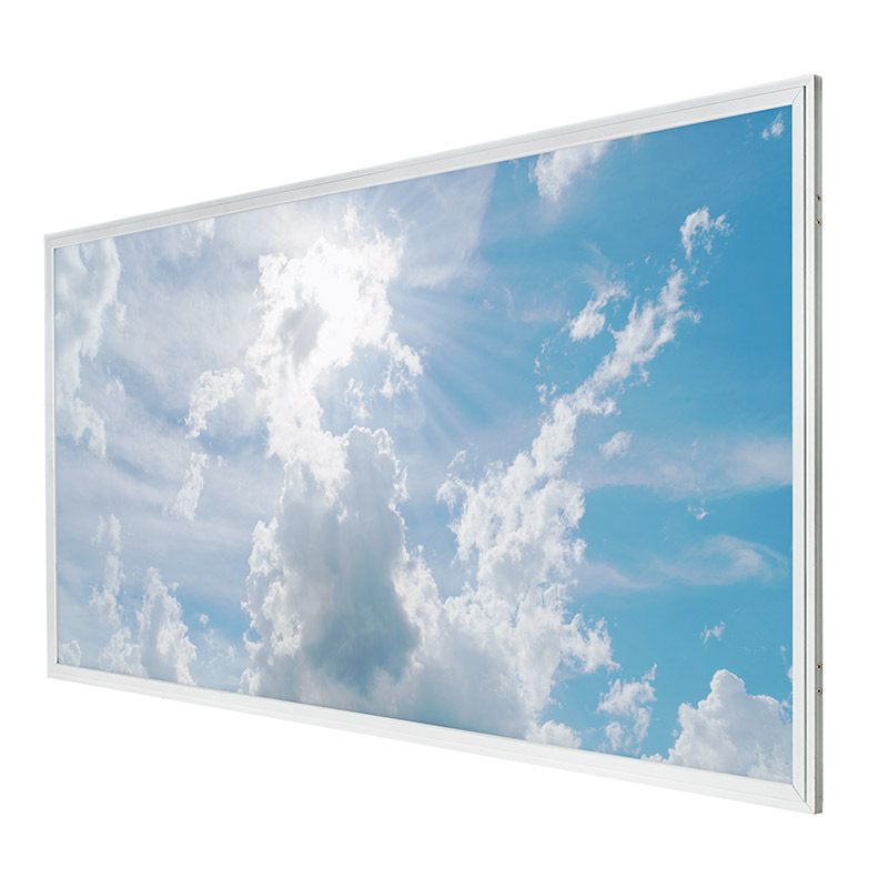 Led Skylight 2x4 Even Glow 174 Led Panel Light W Skylens