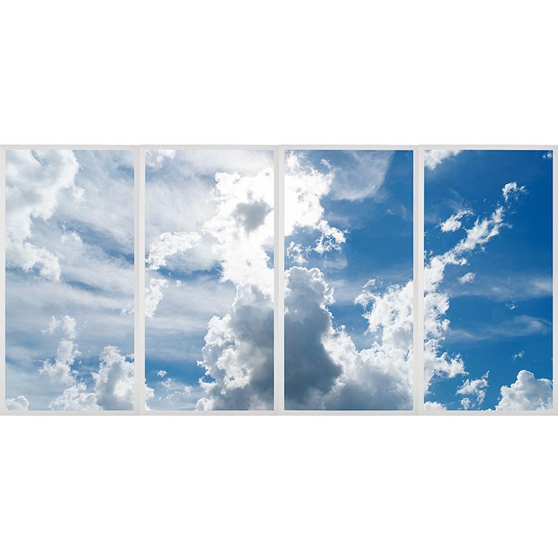 Multi Led Skylight Display W Skylenses 174 2x4 Dimmable