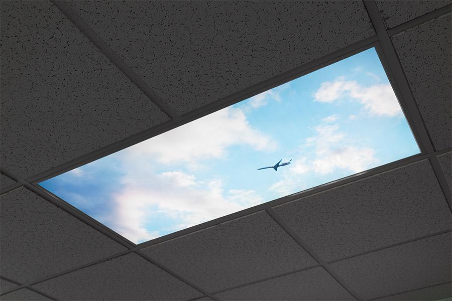 Led Skylight W Balloon 1 Skylens 174 2x4 Dimmable Led