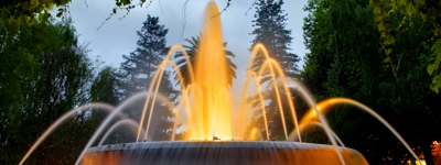 Fountain LED Lights