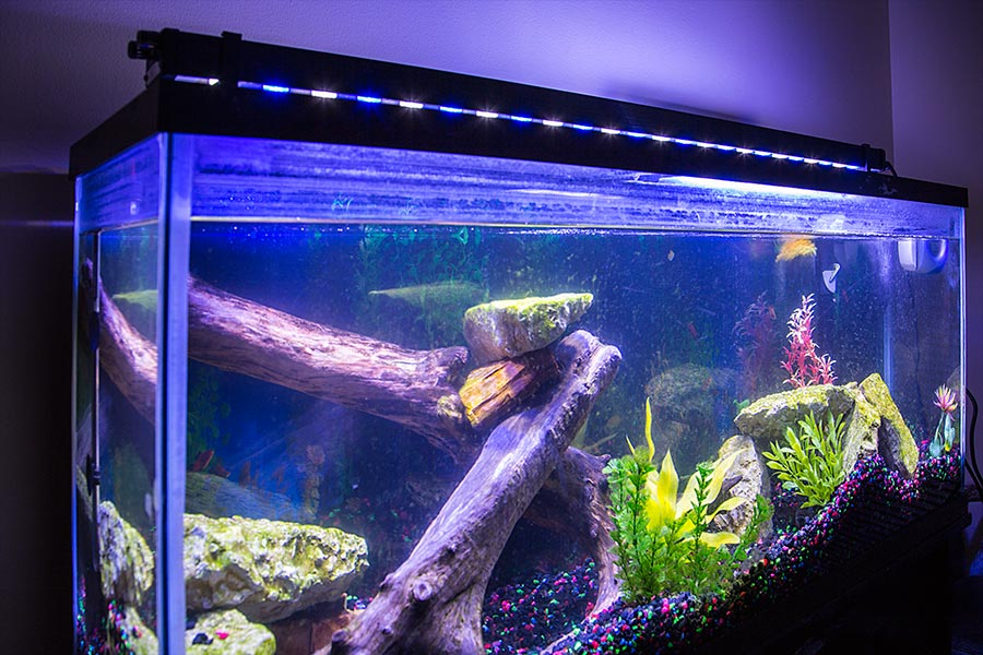46 high power led aquarium light fixture led aquarium. Black Bedroom Furniture Sets. Home Design Ideas