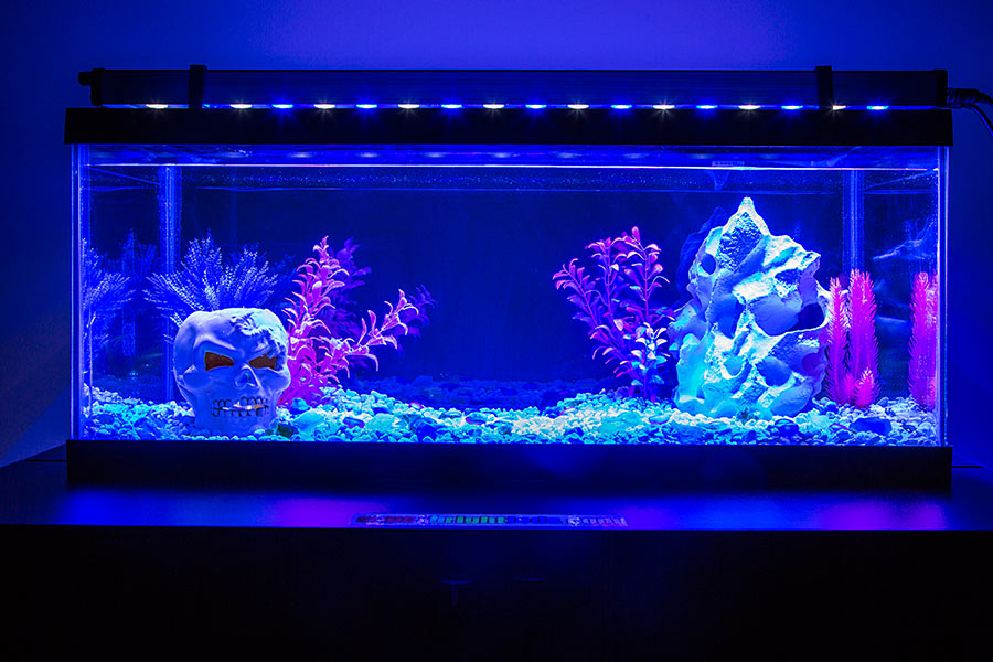 36 high power led aquarium light fixture led aquarium. Black Bedroom Furniture Sets. Home Design Ideas