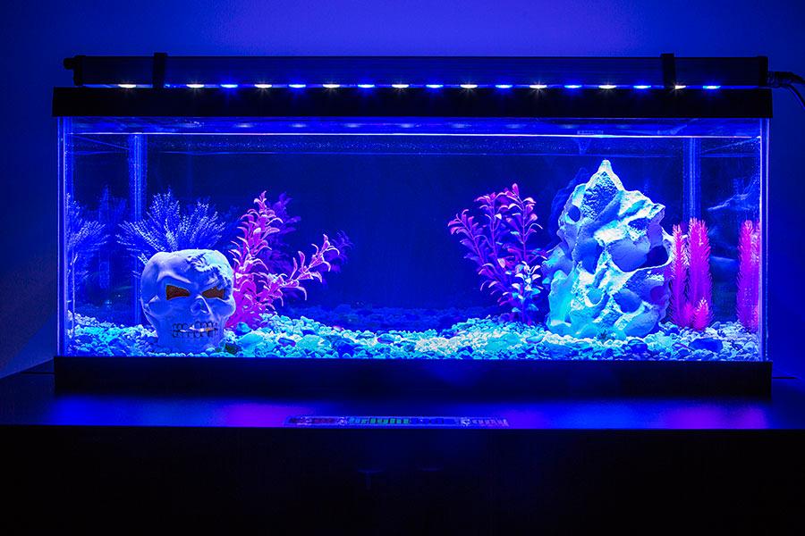 Light Blue Tanks