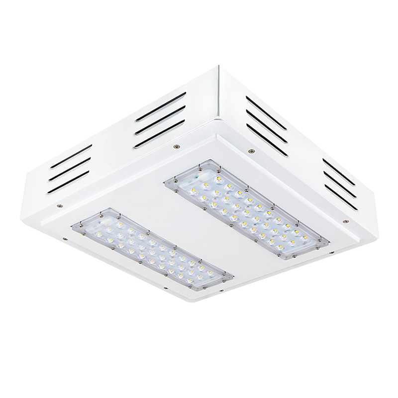 Led Canopy Lights: Flush/Surface Mount