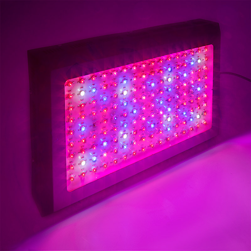 LED Grow Light   432W Rectangular Panel Plant Grow Lamp, 7 Band Spectrum:  Turned On Table Showing Beam Pattern