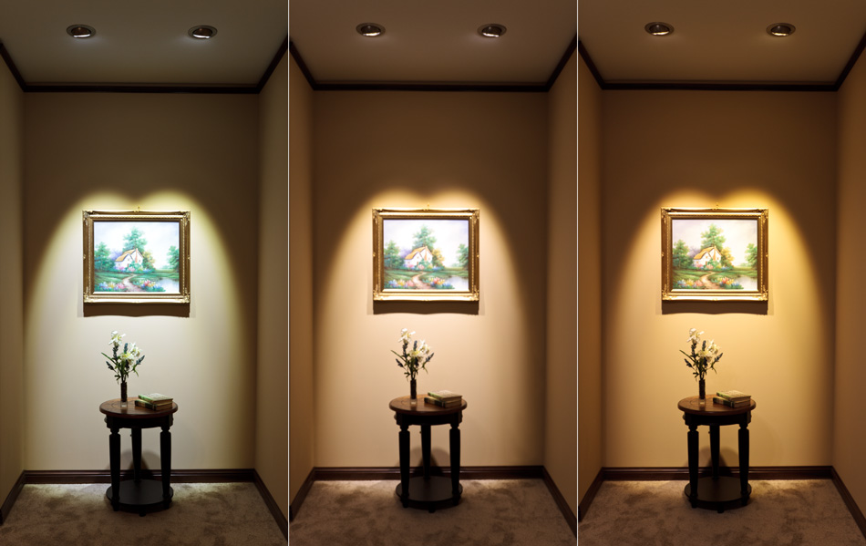 Led House Lights : LED  LED Flood Light Bulbs and LED Spot Light Bulbs  LED Home ...