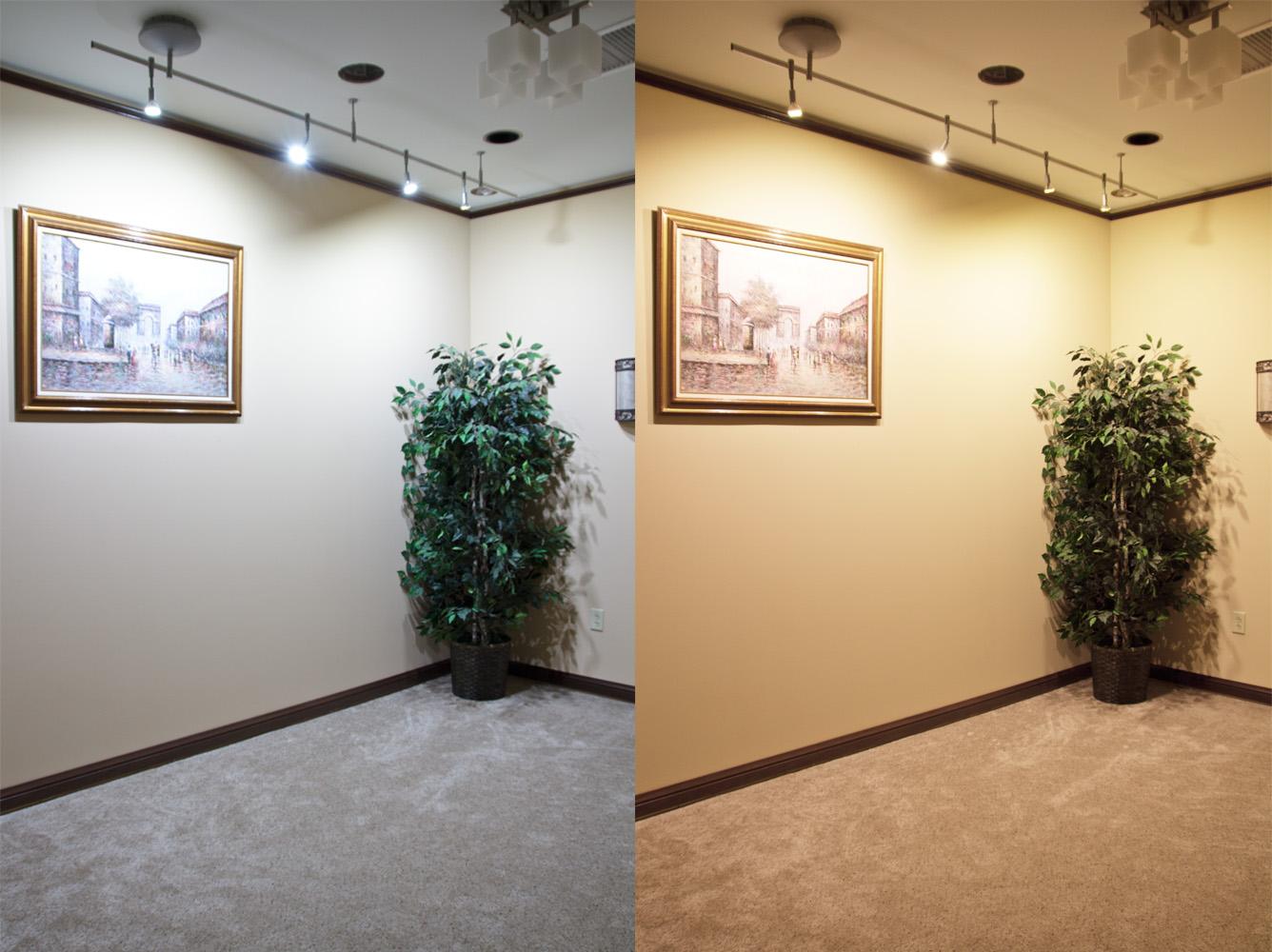 Cool white vs warm white led lights - Cool White Vs Warm White