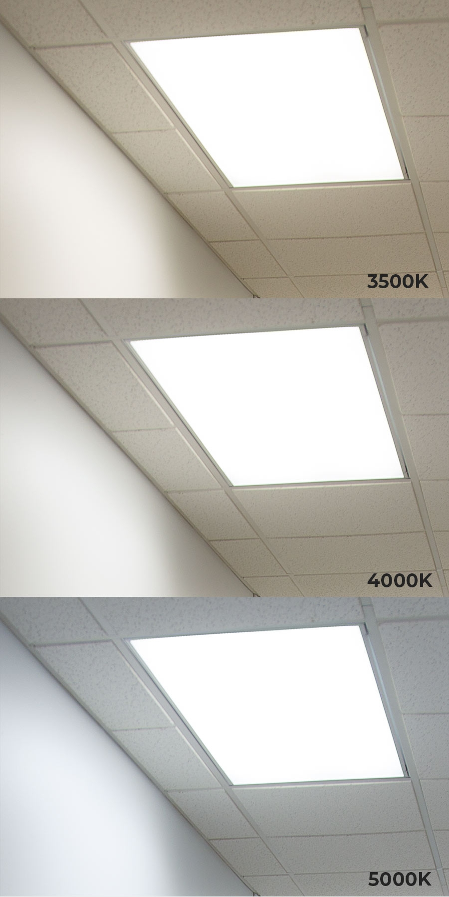 competitive price 4f877 88178 LED Panel Light - 2x4 - 5000 Lumens - 50W Dimmable Even-Glow® Light Fixture  - Drop Ceiling - 5000K/4000K/3500K