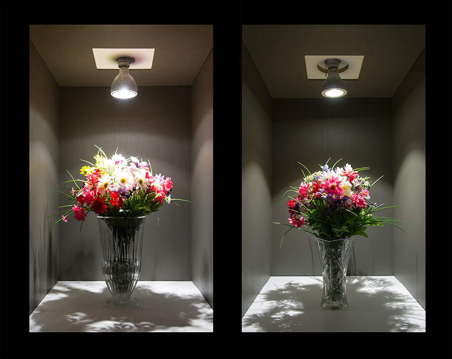 30 Watt Light Bulbs: PAR30 LED Bulb, 30W: Shown On (Left) Compared To PAR30D-NW13,Lighting