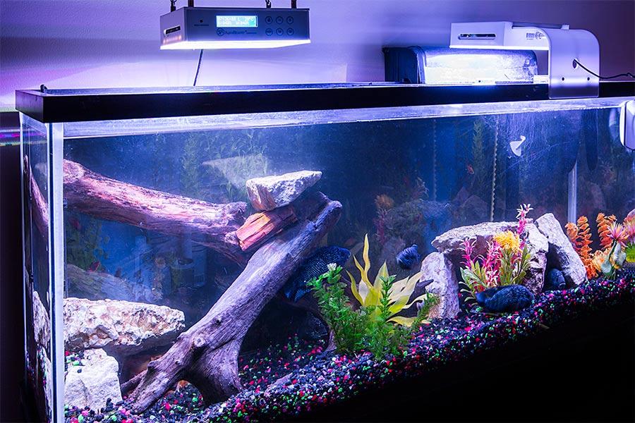 35w Programmable Led Aquarium Light With Remote Led