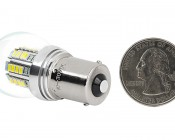 1156 LED Bulb - Single Intensity 36 High Power LEDs: Back View With Size Comparison