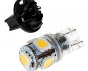 194 LED Bulb w/ Socket - 5 SMD LED - Miniature Wedge Retrofit