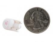 194 LED Bulb - 1 SMD LED - Miniature Wedge Retrofit: Back View with Size Comparison