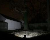20 Watt High Power LED Flood Light Fixture: 10 Watt High Power LED Flood Light Fixture: Shown Illuminating Backyard (Approx. 30' To Fence).