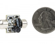 DE3175 LED Bulb - 4 SMD LED Festoon - 30mm: Back View With Size Comparison
