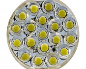 3157 LED Bulb - Dual Function 25 LED Forward Firing Cluster - Wedge Retrofit: Front View