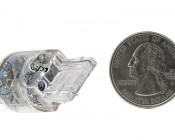 7440 LED Bulb - Single Intensity 15 LED: Back View With Size Comparison