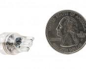 194 LED Bulb - 6 LED Forward Firing Cluster - Miniature Wedge Retrofit: Back View