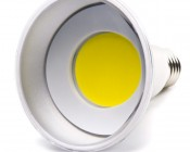 PAR30 LED Bulb, Weatherproof