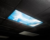 Custom Printed LED Skylight - Dimmable Even-Glow® LED Panel Light: Installed in Ceiling Matching Black Tile