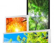 Custom Printed LED Panel Light - Dimmable - Even-Glow® Light Fixture - for Drop Ceilings