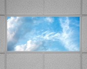Replacement Diffuser for Dimmable Even-Glow® LED Panel Lights - Summer Sky LUXART® Print - 2' x 4': Shown Installed In Fixture.