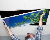 Even-Glow® LED Panel Light - Balloon 1 LUXART® Print - 2' x 4': : Showing Panel Being Installed In Drop Ceiling.